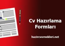 Cv Hazırlama Formu Boş Cv Örnekleri 2017