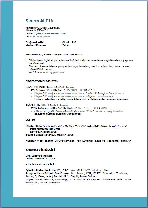 Fonksiyonel-Cv-Örneği-2