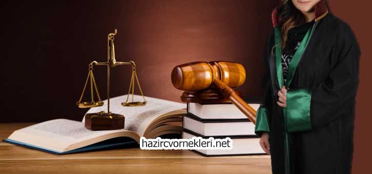 Avukat Cv Örnekleri
