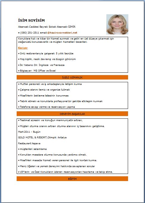 Hedef CV Örnekleri