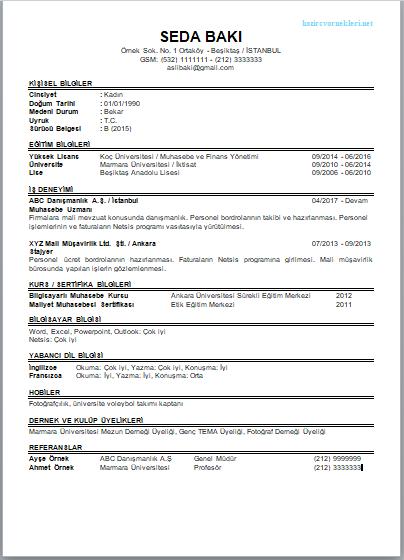 Cv pdf cv örnekleri